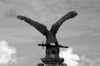 953875_iron_eagle_in_budapest