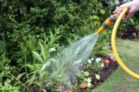 peta zahradnici
