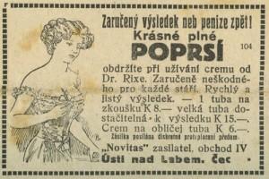 Vídeňské ilustrované noviny 1919