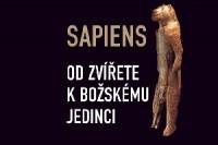 perex_sapiens