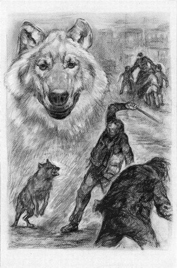 Ilustrace - Bitva na řece Pádu