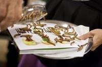 hmyzi kucharka
