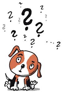 Muj-psi-zivot-ukazka