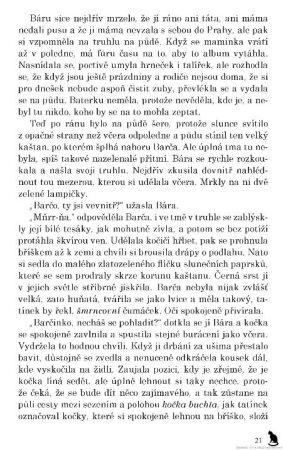 karel-iv-ukazka
