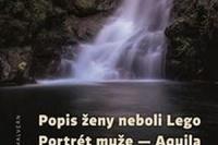 big_popis-zeny-neboli-lego-portret-muze-c6f-347384