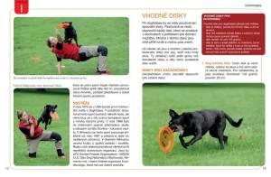 Dogfrisbee-ukazka