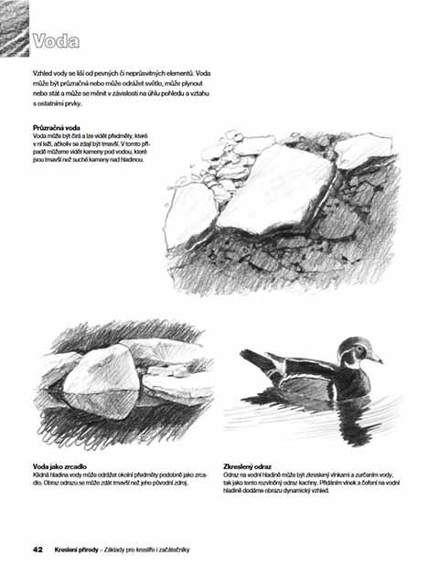 kresleni-prirody-ukazka-2