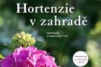 hortenzie-v-zahrade-perex