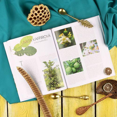 Exoticke koreni s recepty_ukazka