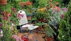 Zkuste to doma sami zahrada balkon ukazka