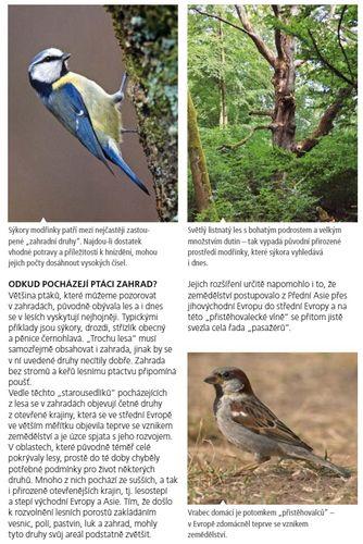 Poznate ptaky nasich zahrad_ukazka