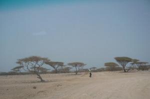 Odpad_Trampoty zpoceneho muze_Dzibuti 2011_6