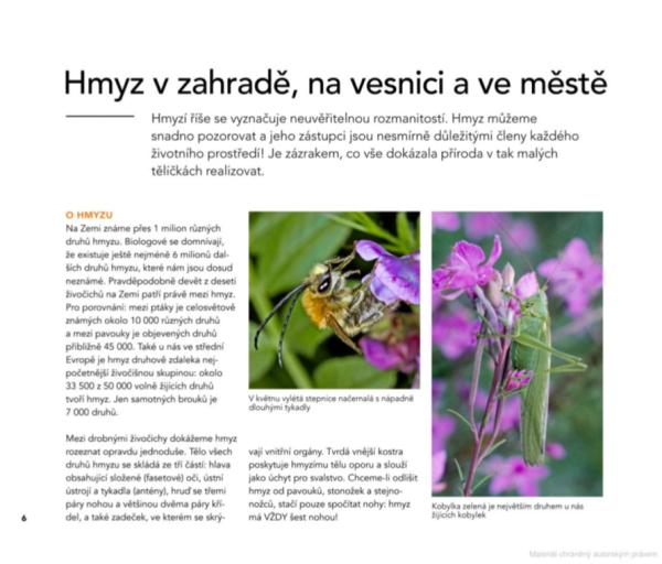 hmyzzahrada-ukázka